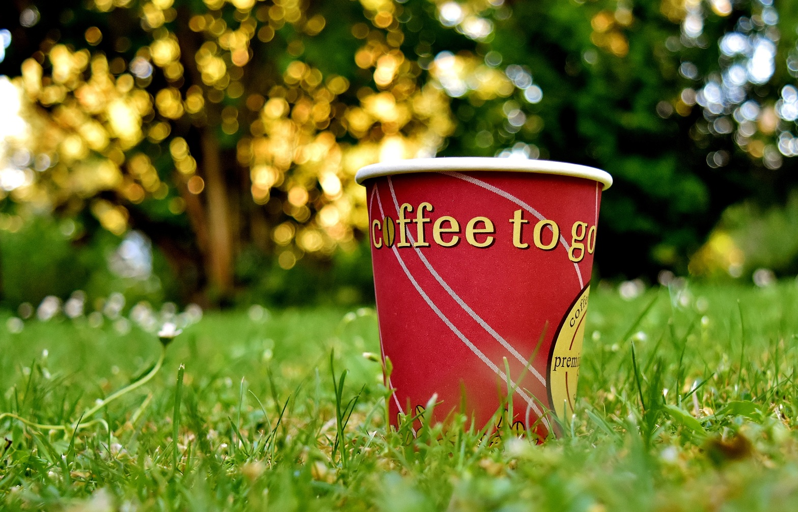 Non-recyclable takeaway coffee cup